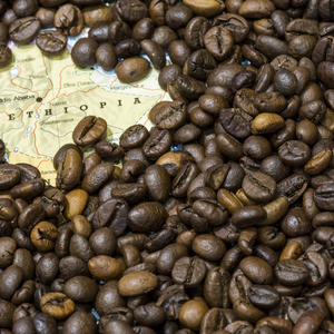 Medium ethiopia coffee map